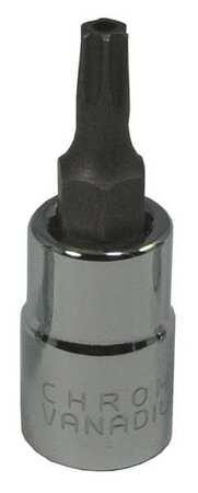 Westward Socket Bit 1/4 in. Dr T20 Tamper Torx(R)