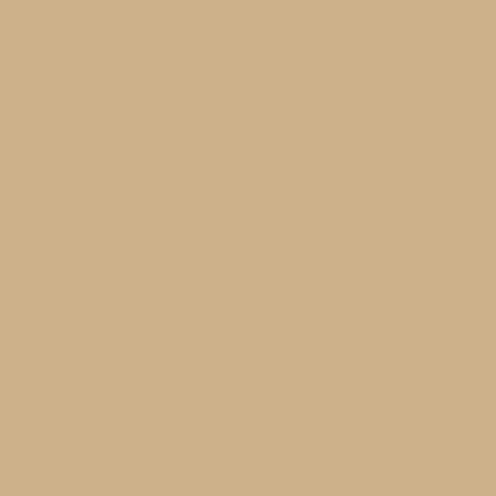 Rye Interior Paint, Flat, 1 Gal.