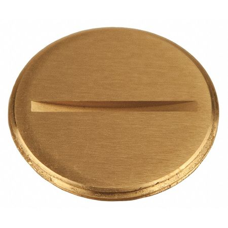"""Flush Replacement Plug 1 1/2"""" L Brass by USA Raco Electrical Floor Boxes & Covers"""